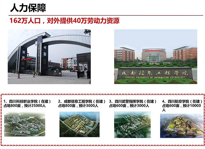 四川成都仁寿国有一手工业用地,可分割出售图片