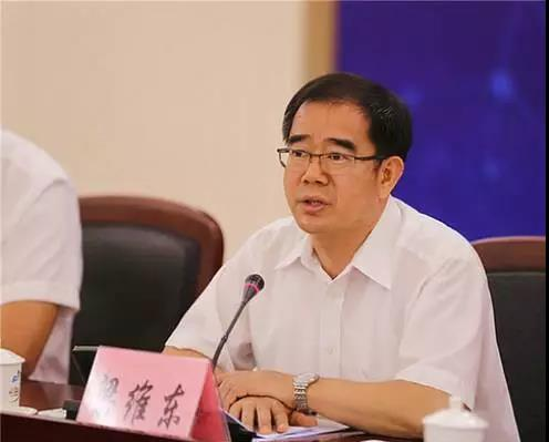 东莞市委副书记、市长梁维东在会上发言