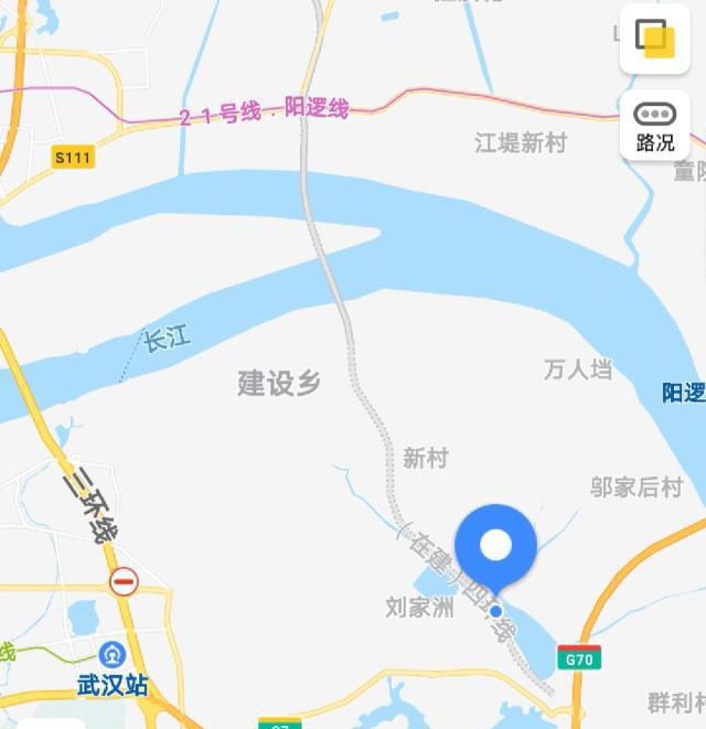 武湖大桥2.jpeg