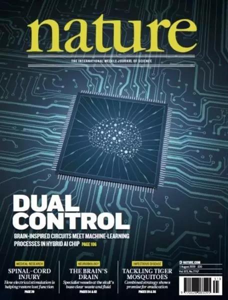 《自然》杂志封面截图.jpg