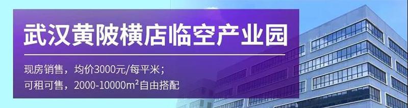 武汉黄陂临空产业园.jpg