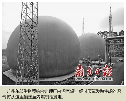 广州垃圾分类:十年探路再出发