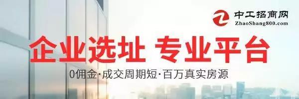 中工招商网.jpg