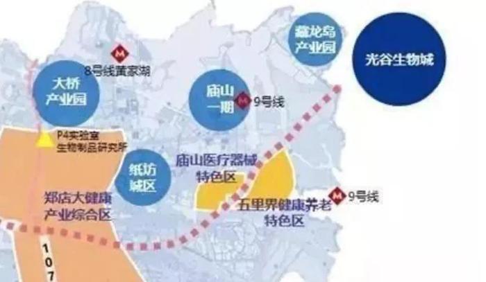 东湖高新国际健康城.jpg