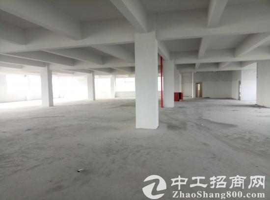东风典型13500方大户型厂房1-5F出租