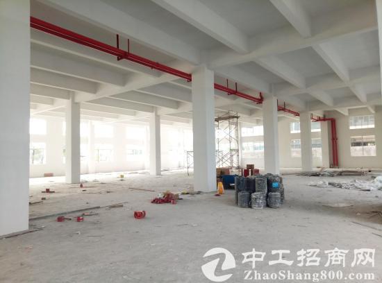 东风典型13500方大户型厂房1-5F出租-图2