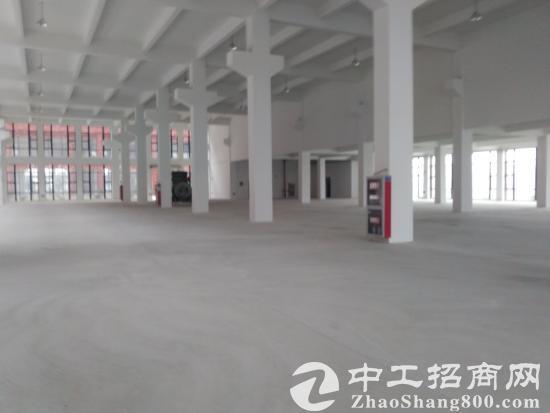 独门独院单一层5200平方厂房出租可分租