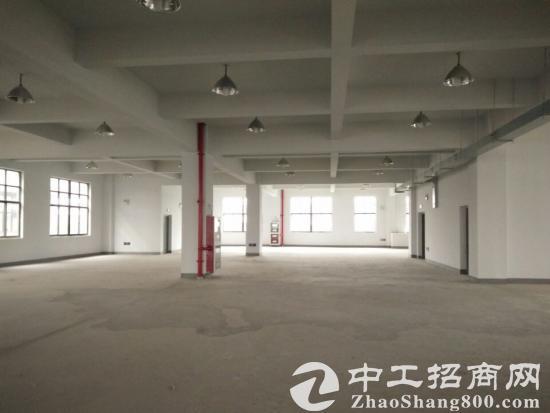 园区唯新路独门独院标准厂房出租13000平米