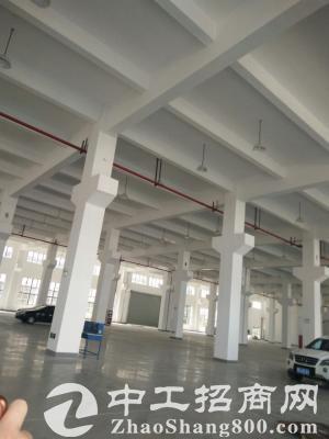 园区独院标准厂房出租11000平米