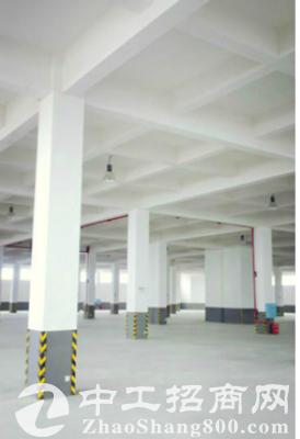 300--1000平米轻工业多功能厂房 仓库