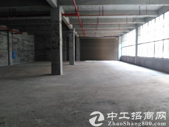 300--1000平米轻工业多功能厂房 仓库-图2