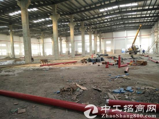 园区独栋新建厂房出租8000平米