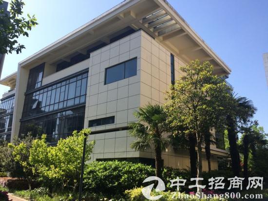 广富林遗址附近独立绿证办公总部空关毛坯厂房出售