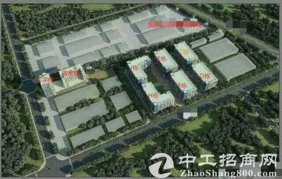 广东江门市大量工业用地出售产权清晰可分割