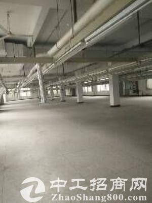 园区唯亭一楼500平米标准厂房出租