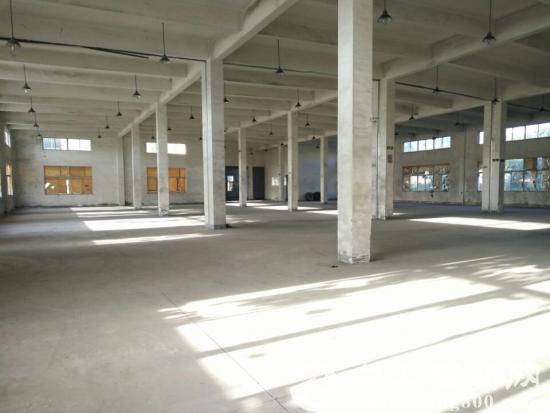 昆山城西独门独院全新厂房出租7767平米-图2