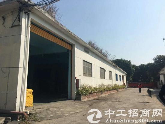 横沥新出单一层独门独院标准厂房800平方