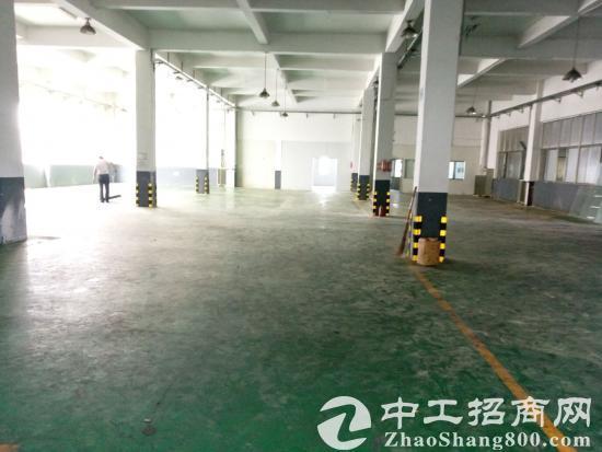 精装修一楼厂房仓库900平米出租