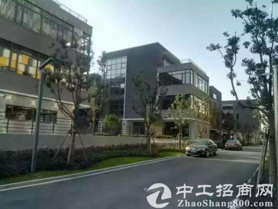 九亭大虹桥板块全新独栋精装修写字楼1300平