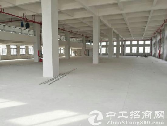 苏州工业园区胜浦1000平方厂房出租