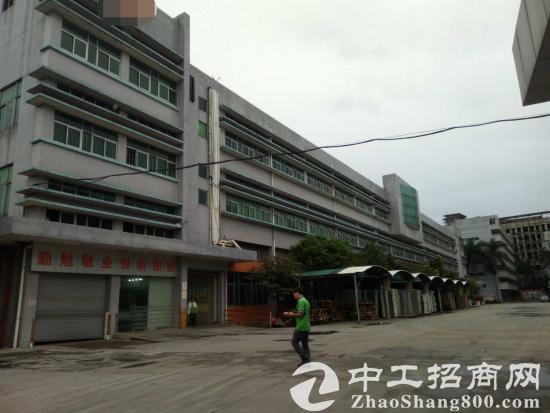 谢岗镇建筑20000 国有产权厂房出售