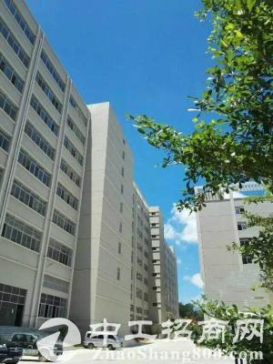石岩3楼 一整层 1800平方 带豪华装修厂房出租