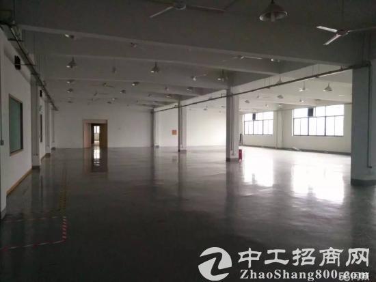 城北精装修2楼1800平米厂房出租可分租-图3