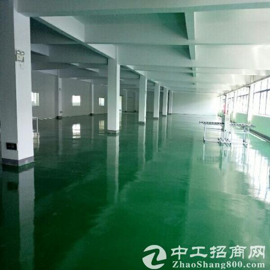 精装修厂房2400平米16元超低价出租
