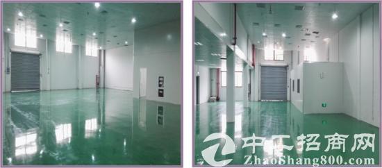 昆山高新区正仪精装修二楼厂房出租2400平米-图2