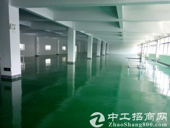 精装修二楼环氧地坪2400平方厂房出租