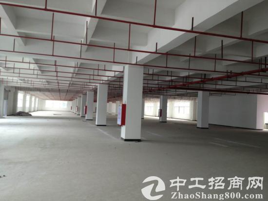 东莞塘厦临深片区16500平米国有证厂房出售