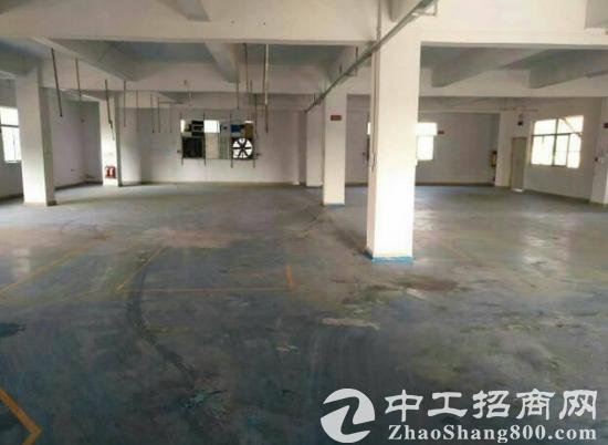 本镇成熟工业园区一楼2000平米招租,可做污染厂房分租