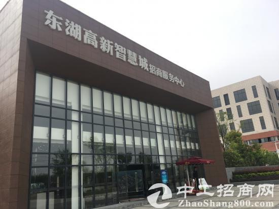 东湖高新智能制造、生物医药主题园区(开发区直招)