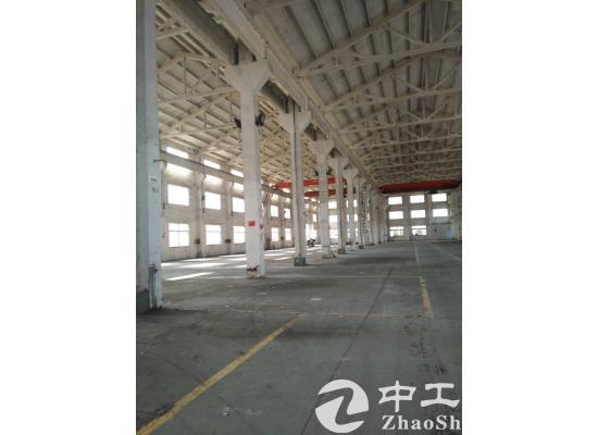 杨市3100平米独立标准亿万先生