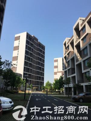 光谷高新技术产业园区独栋、厂房、研发楼出售-图2