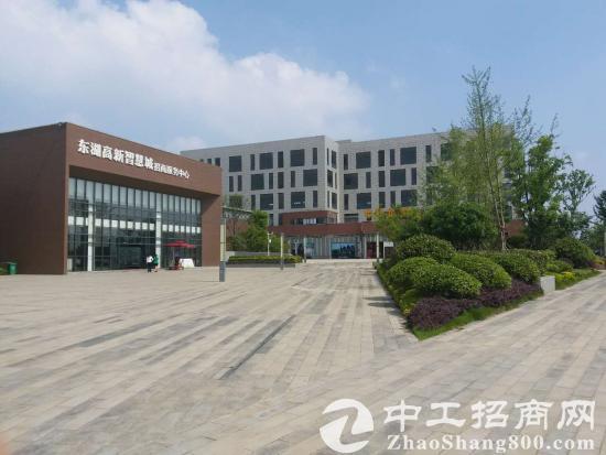 葛店经济技术开发区独栋厂房、研发楼出售