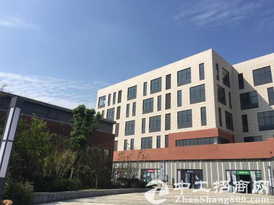 葛店经济技术开发区独栋厂房、研发楼出售-图2