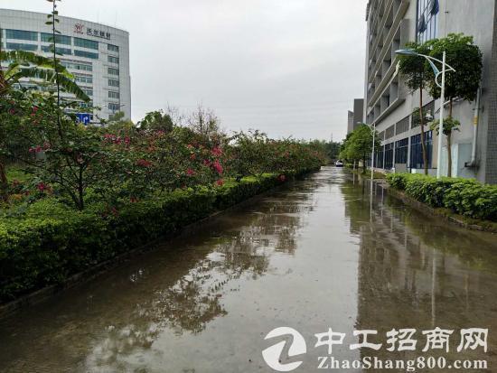 深圳 坪山 大工业区 全新厂房9586平方低价出租