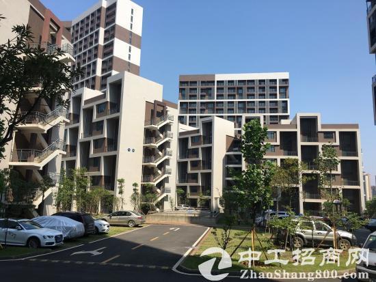 光谷高新技术产业园区独栋、厂房、研发楼出售-图3