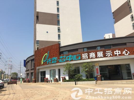 光谷高新技术产业园区独栋、厂房、研发楼出售-图4