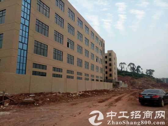 本公司肇庆项目己落成红本产权,不限行业,只要25万一亩