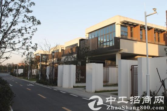 鄂州梧桐湖新区低价厂房/研发楼/独栋出租、出售