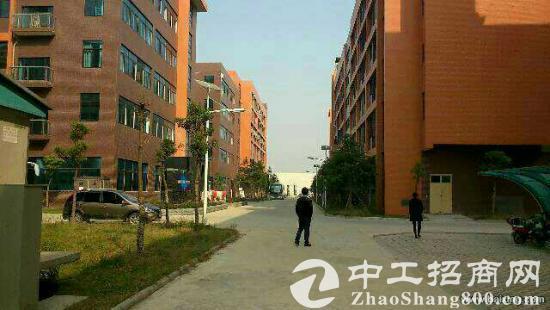 武汉市东西湖区1540平方米标准工业厂房出售