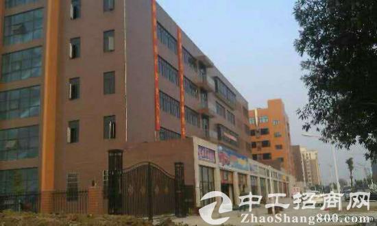 武汉市东西湖区1540平方米标准工业厂房出售-图2