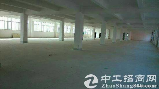 武汉市东西湖区1540平方米标准工业厂房出售-图4