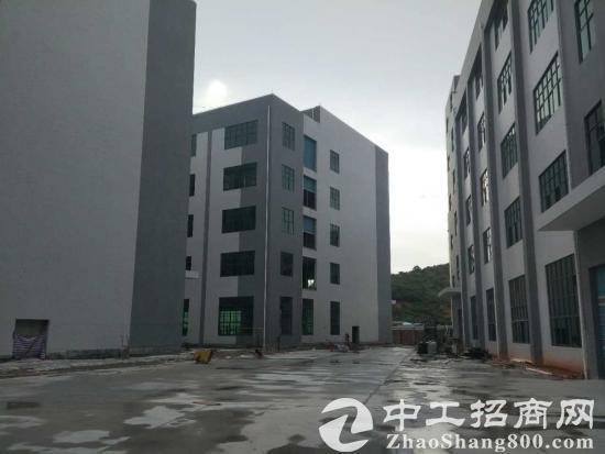 惠阳沙田全新厂房一栋5层有三吨电梯有消防喷淋厂房