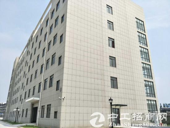 松江全新厂房1400平适合服装、研发、环保等高新科技