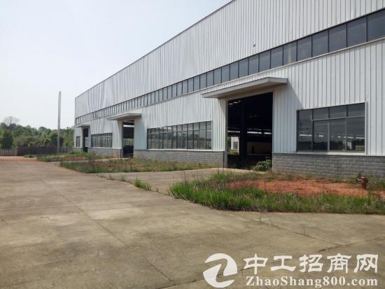 黄兴干杉大型标准厂房仓库低价急租-图2