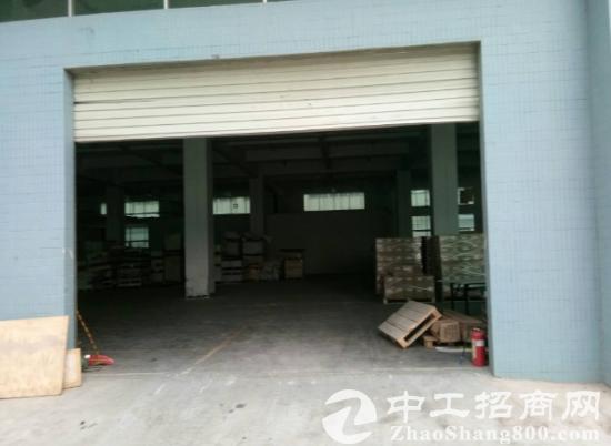 常平司马一楼1200平九成新厂房-图3