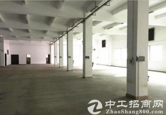 博罗永石大道独栋厂房3800平米(精装修)